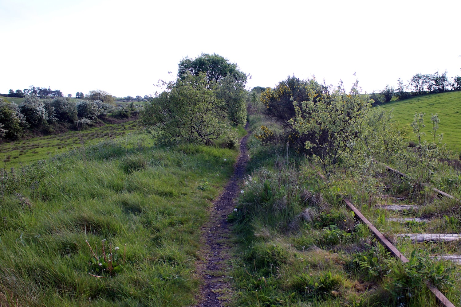 Sections of the branch line are still visible in places