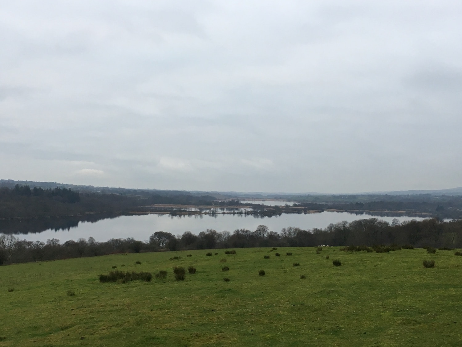 Looking south over Castle Semple Loch, the top of Barr Loch can also be seen towards the horizon