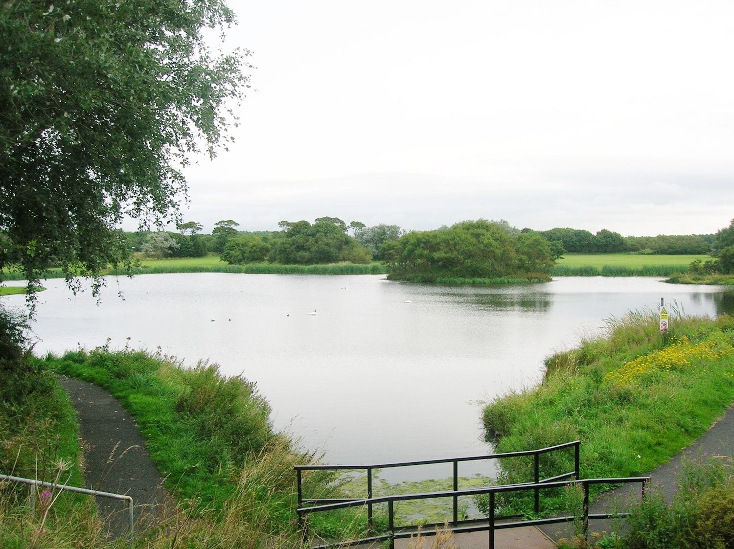 The pond at the site of Ardeer Quarry is now a haven for nature • Image source: Wikimedia Commons
